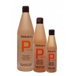 Salerm Protein Shampoo